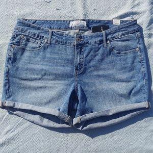 NWT Torrid rolled hem denim jean shorts size 18